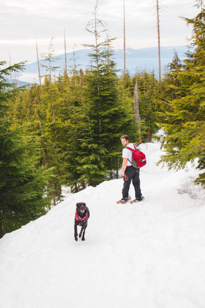 bowen_lookout_snowshoeing-12