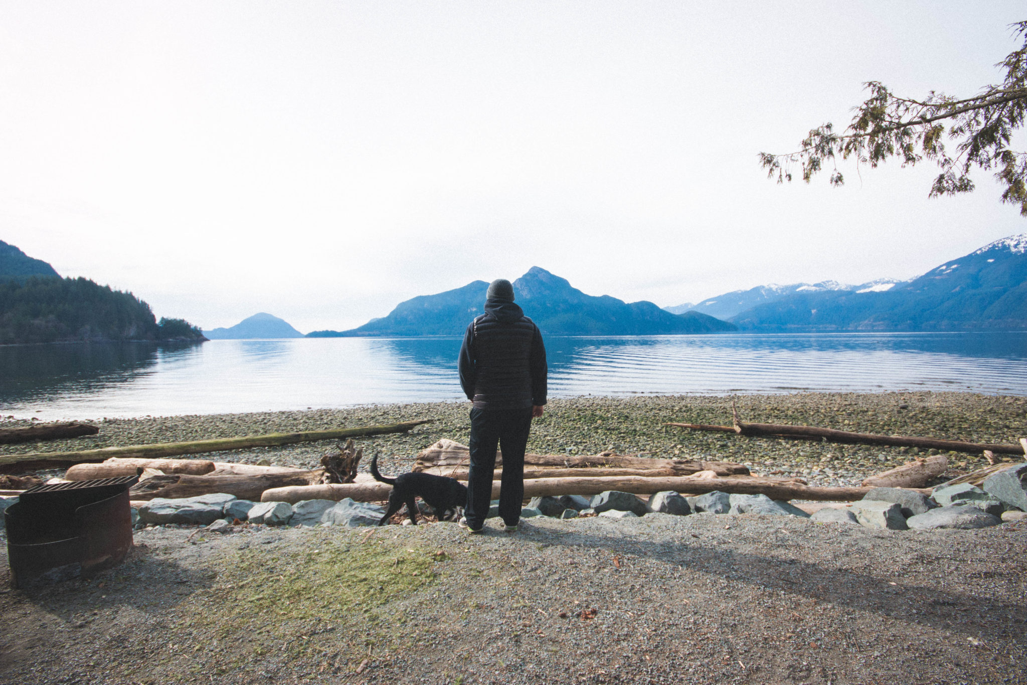 dog and human at porteau cove campsite