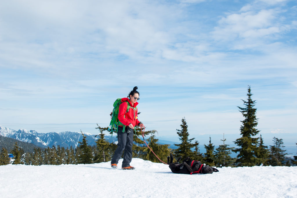 Black-Mountain-Snowshoe-13