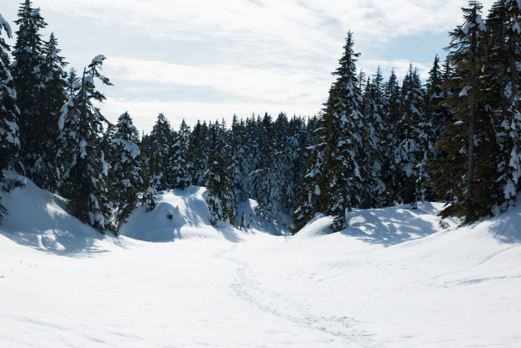 Black-Mountain-Snowshoe-6